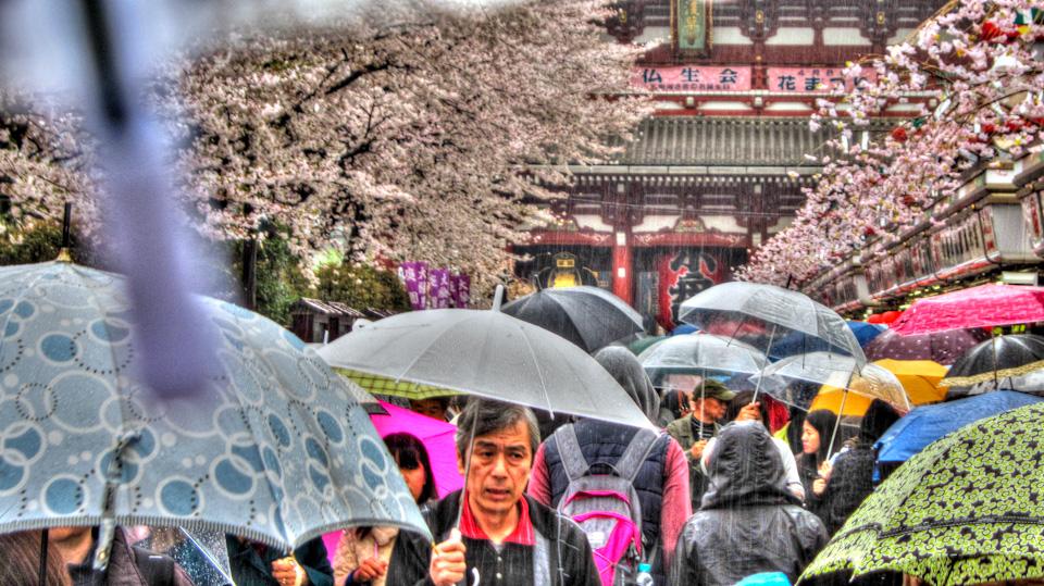 Tempio Snesō-ji, Asakusa